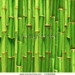 Stock Photo Bamboo Background 135982862
